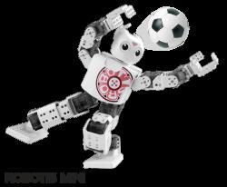 Robotis - Darwin Mini İnsansı Robot