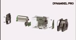 Dynamixel Pro L42-10-S300-R Servo Motor - Thumbnail