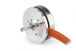 Maxon - Maxon Servo Motor (Hall Sensörlü)