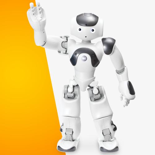 nao-power-insansi-robot-platformu-v6-standart-versiyon-4855-nsans-robot-softbank-robotics-9277-48-B.png